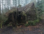 613-BTS-Cabin in the Woods