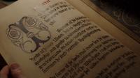414-Willahara Grimm Diaries