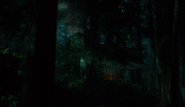 313-Meisner's cabin