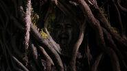 609-Tree Face