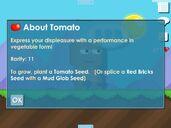 Tomato Description