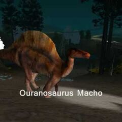 Ouranosaur in the countryside.