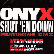 onyx shut em down remix big pun biography