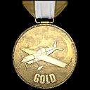 File:Flight School Gold GTA V.png