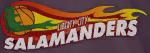 File:LibertyCitySalamanders-Logo.png