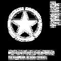 ArmyVehicles-GTAV-Details.png