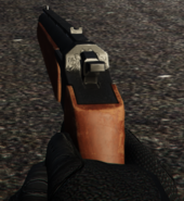 Marksman Pistol FPS GTA V