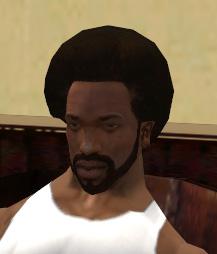 File:Reece'sHair&FacialStudio-GTASA-Afro&Beard.jpg