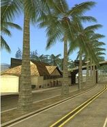 GTA-San-Andreas-Addon-More-Palm-Trees-on-Verona-Beach-Road 1