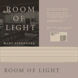 File:Roomoflight.png