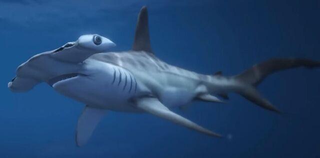 File:Hammerhead Sharks GTAVe.jpg
