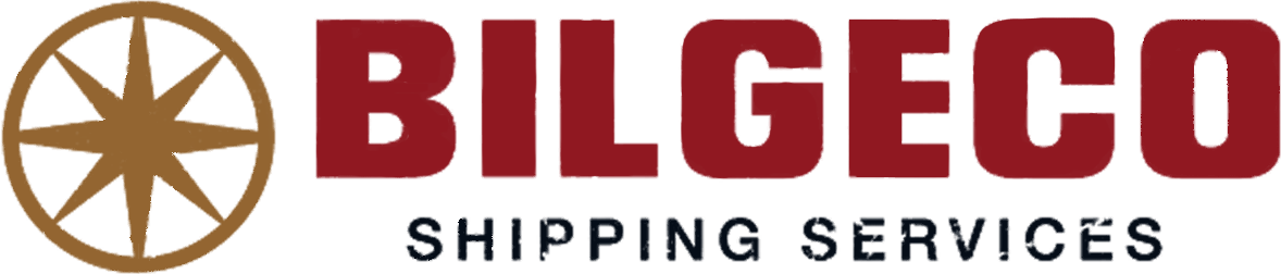 File:Bilgeco-GTAV-Logo.png