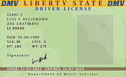 File:DriverLicense-StateofLiberty-GTAO.png