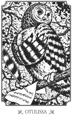 File:Otulissa drawing (from Ga'Hoole Guide).png