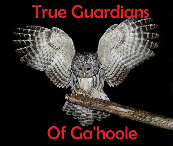 File:True Guardians of Ga'hoole.jpg