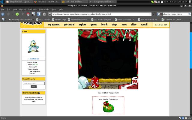 File:20081219-FreeNC-ScreenCapture.png