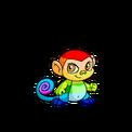 Mynci rainbow