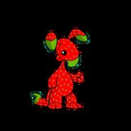 StrawberryBlumaroo