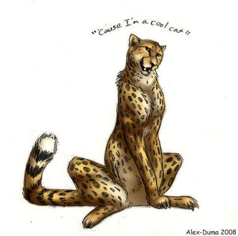 File:Cause I m a Cool Cat by Alex Duma.jpg