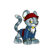 Kougra pirate