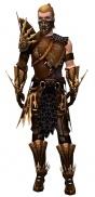 Ranger Elite Sunspear armor m