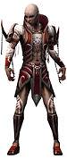 Olias Mysterious armor.jpg