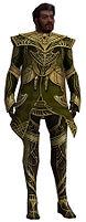 Norgu Primeval armor.jpg