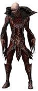 Olias Primeval armor.jpg