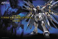 PG Strike Freedom Boxart