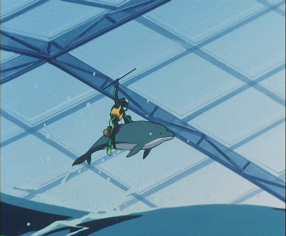 File:Dolphin Rider.png