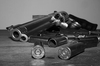 Gun..bullets - smith & wesson 460 magnum