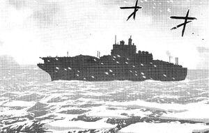 Bonple carrier