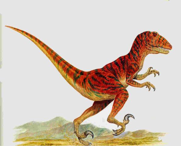 File:Adasaurus.jpg
