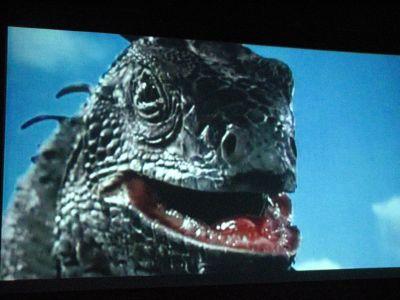 File:Giant iguana.jpg