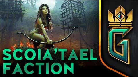 Scoia'tael Faction GWENT The Witcher Card Game