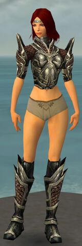 File:Warrior Elite Kurzick Armor F gray chest feet front.jpg