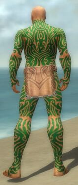 Monk Flowing Armor M dyed back