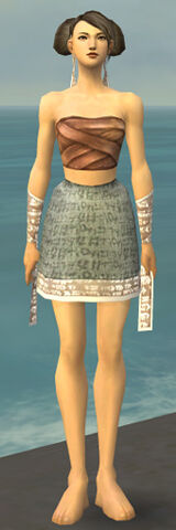 File:Monk Woven Armor F gray arms legs front.jpg