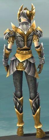File:Warrior Templar Armor F dyed back.jpg