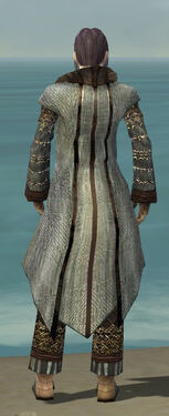 Elementalist Vabbian Armor M gray back