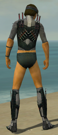 File:Assassin Elite Canthan Armor M gray chest feet back.jpg