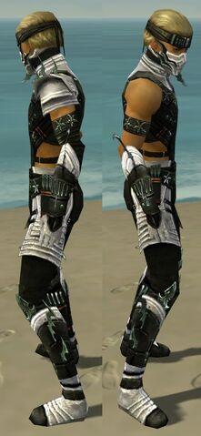 File:Assassin Elite Luxon Armor M dyed side.jpg