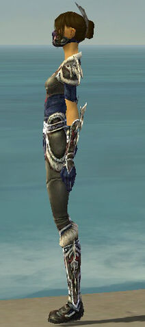 File:Assassin Norn Armor F gray side.jpg