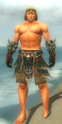 File:Warrior Luxon Armor M gray arms legs front.jpg