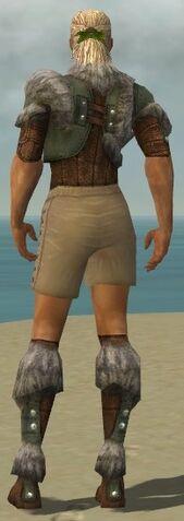 File:Ranger Fur-Lined Armor M gray chest feet back.jpg