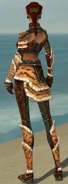 Ranger Vabbian Armor F gray back