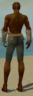 Ranger Tyrian Armor M gray arms legs back