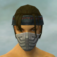 File:Assassin Elite Canthan Armor M gray head front.jpg