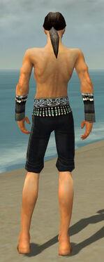 Elementalist Elite Luxon Armor M gray arms legs back