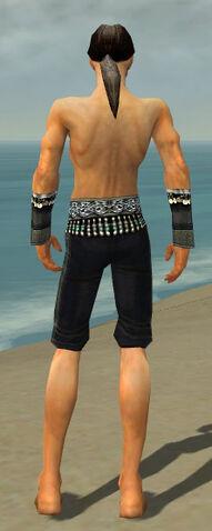 File:Elementalist Elite Luxon Armor M gray arms legs back.jpg